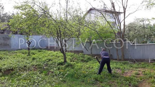 почистване на двор и парцел